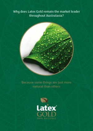 Latex Gold A4 Brochure - Overall